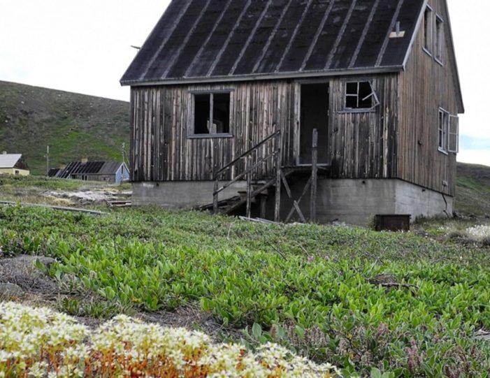 captains-favorite-strait-cruise-sullorsuaq-private-tour-ilulissat-disko-bay-Guide to Greenland1
