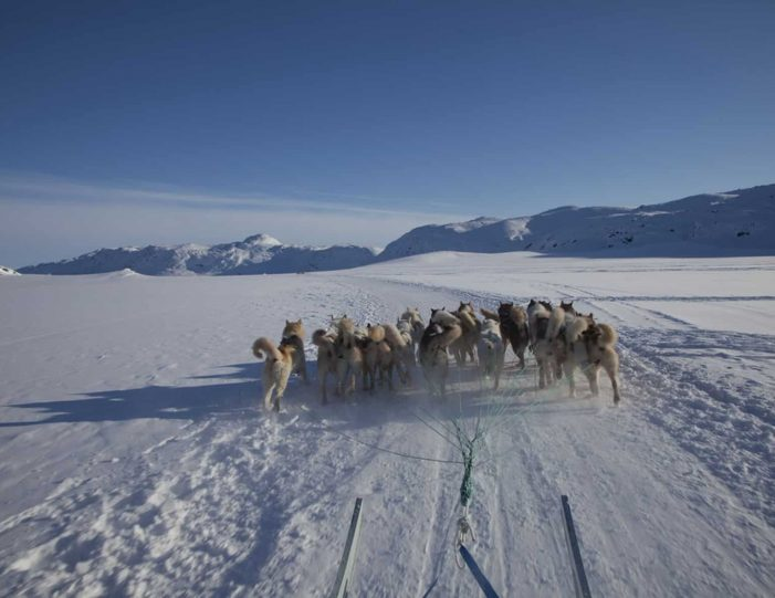 choose-your-own-winter-adventure-ilulissat-4-days-Guide to Greenland10