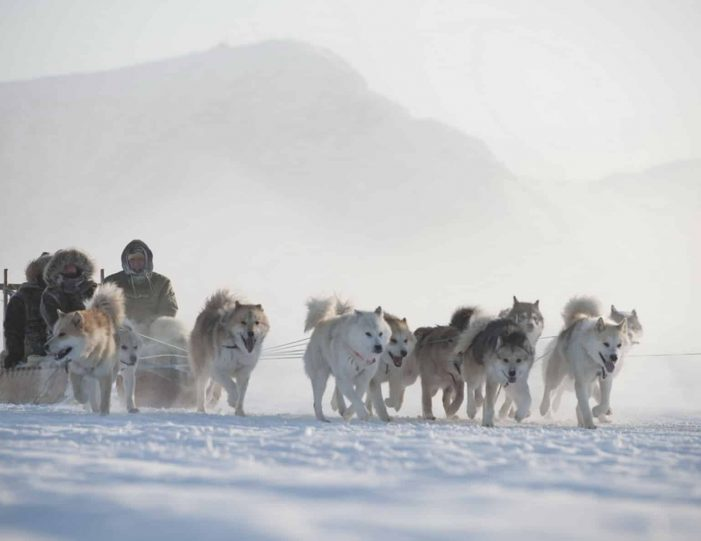 choose-your-own-winter-adventure-ilulissat-4-days-Guide to Greenland2