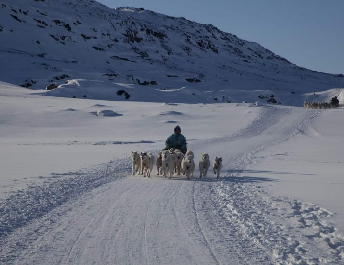 choose-your-own-winter-adventure-ilulissat-4-days-Guide to Greenland9