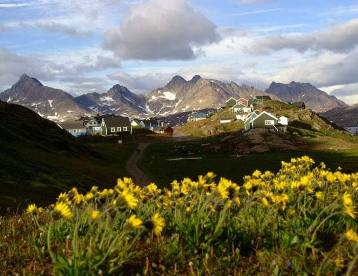 city-tour-and-hike-to-the-flower-valley-tasiilaq-east-greenland - Guide to Greenland7