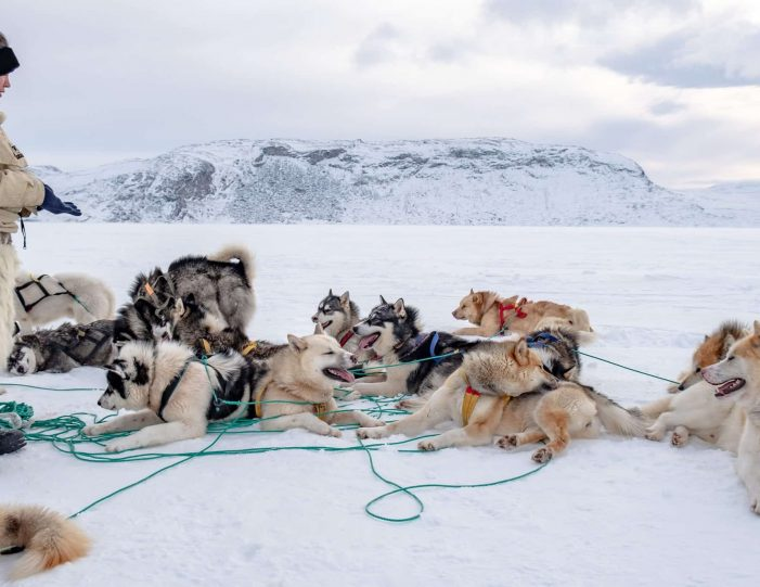 dog-sledding-expedition-kangerlussuaq-to-sisimiut-west-greenland - Guide to Greenland3