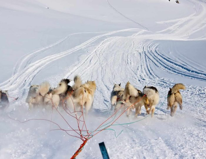 dog-sledding-expedition-kangerlussuaq-to-sisimiut-west-greenland - Guide to Greenland4