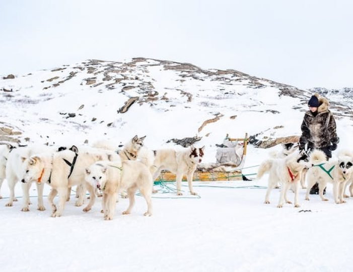 dog-sledding-tour-kangerlussuaq-west-greenland - Guide to Greenland1