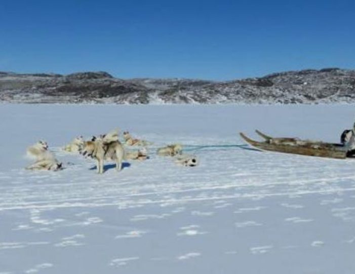dog-sledding-tour-kangerlussuaq-west-greenland - Guide to Greenland12