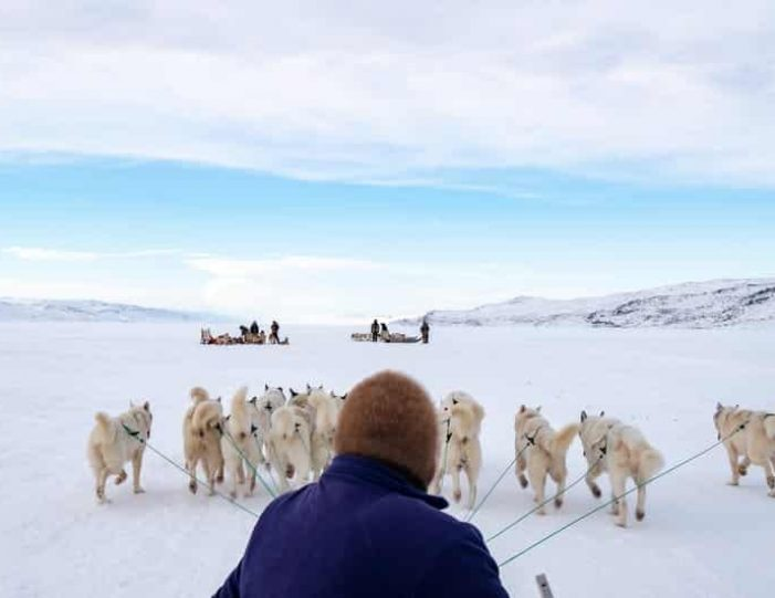 dog-sledding-tour-kangerlussuaq-west-greenland - Guide to Greenland16