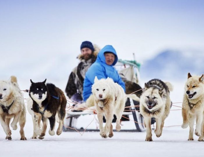 dog-sledding-tour-kangerlussuaq-west-greenland - Guide to Greenland2