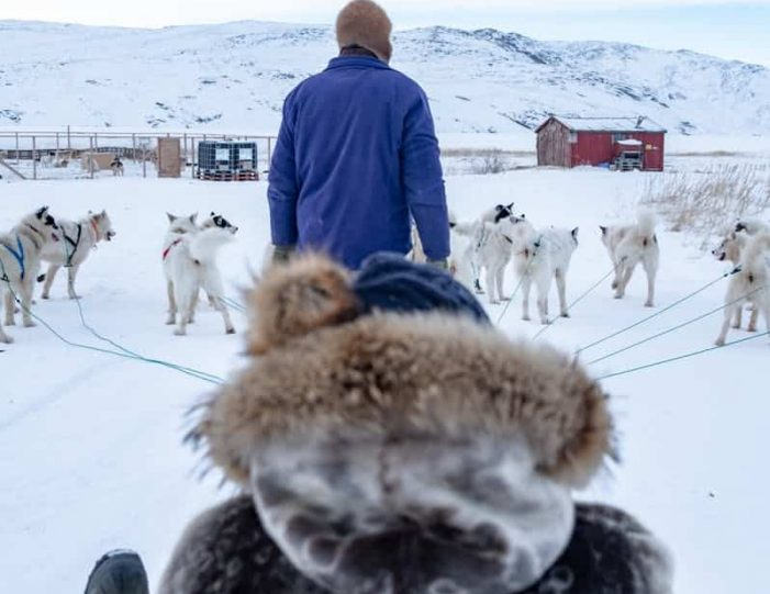 dog-sledding-tour-kangerlussuaq-west-greenland - Guide to Greenland5
