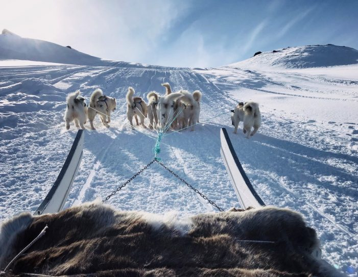 dog-sledding-tour-to-the-ufo-cabin-viewpoint-sisimiut - Guide to Greenland1
