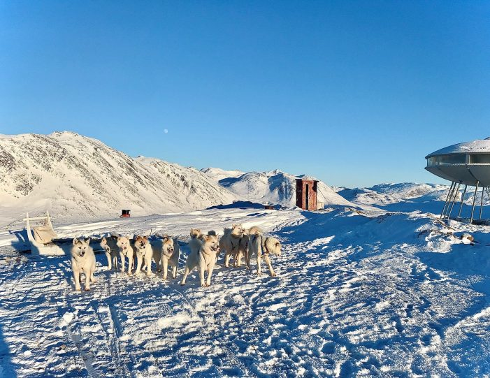 dog-sledding-tour-to-the-ufo-cabin-viewpoint-sisimiut - Guide to Greenland2