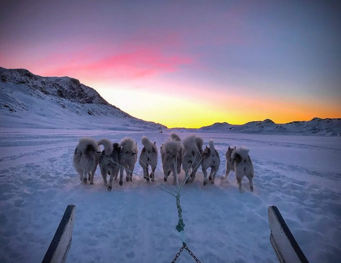 dog-sledding-tour-to-the-ufo-cabin-viewpoint-sisimiut - Guide to Greenland4
