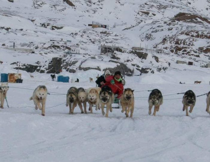 dogsled-expedition-hunting-and-fishing-on-sea-ice-uummannaq-north-greenland-Guide to Greenland15