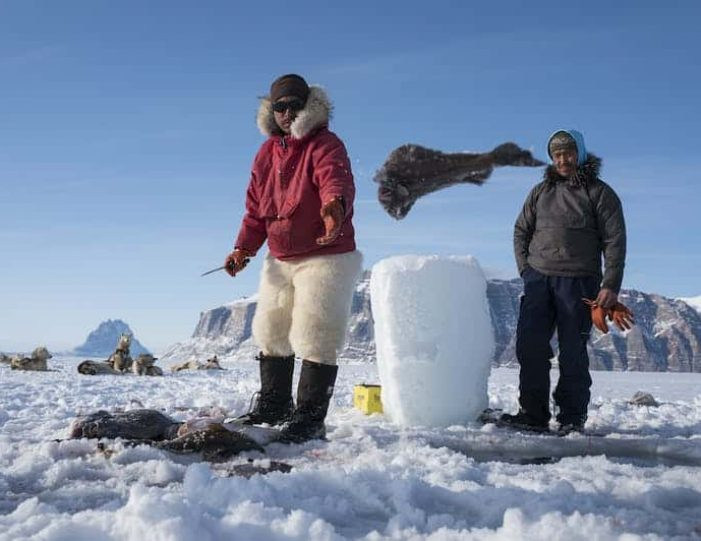 dogsled-expedition-hunting-and-fishing-on-sea-ice-uummannaq-north-greenland-Guide to Greenland18
