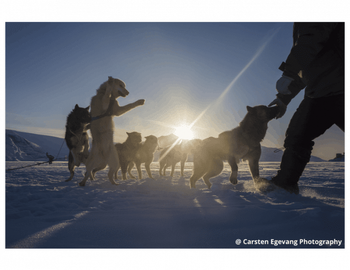dogsled-expedition-to-settlements-uummannaq-north-greenland-Guide to Greenland3