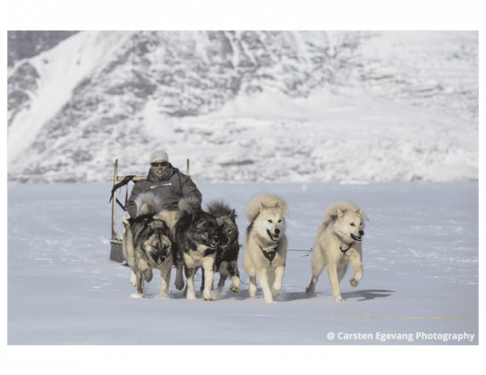dogsled-expedition-to-settlements-uummannaq-north-greenland-Guide to Greenland5