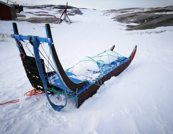 dogsled-tour-ilulissat-disko-bay - Guide to Greenland13