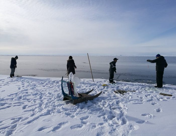 dogsled-tour-ilulissat-disko-bay - Guide to Greenland14