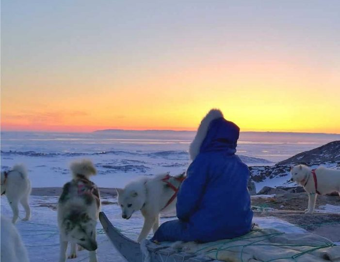 dogsled-tour-ilulissat-disko-bay - Guide to Greenland2