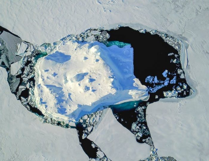 dogsled-tour-ilulissat-disko-bay - Guide to Greenland9