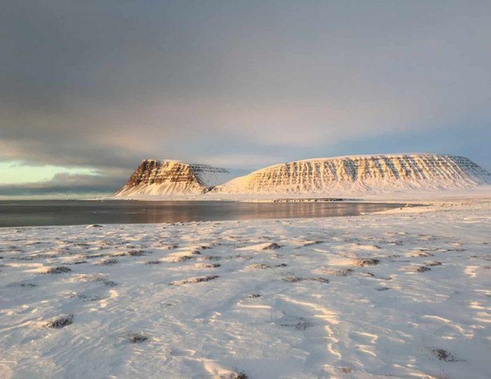 dogsledding-5-hours-qeqertarsuaq-disko-bay-Guide to Greenland3