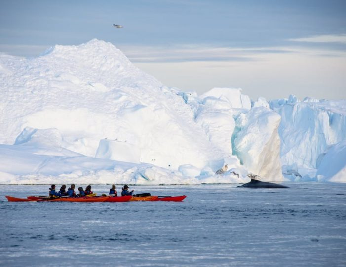 evening-kayaking-among-icebergs-ilulissat-disko-bay - Guide to Greenland8
