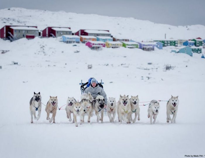 expedition-on-dogsled-2-days-ilulissat - Guide to Greenland3