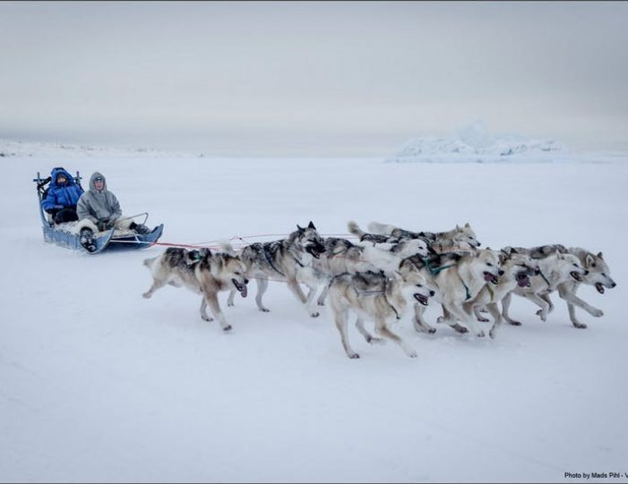expedition-on-dogsled-2-days-ilulissat - Guide to Greenland6