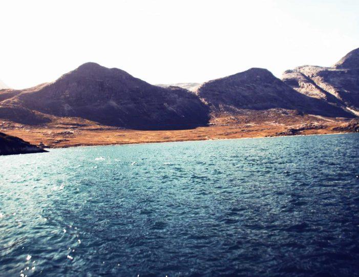 fish-n-dish-qooqqut-nuan-nuuk - Guide to Greenland3