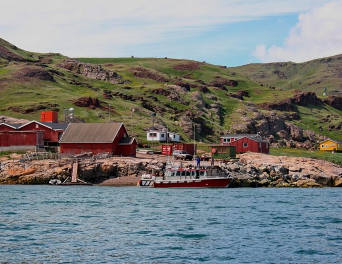 highlights-of-south-greenland-8-days-Guide to Greenland17