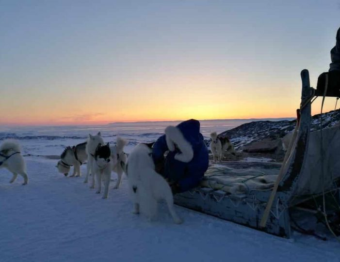 highlights-of-the-arctic-winter-in-5-days-ilulissat-disko-bay-Guide to Greenland8