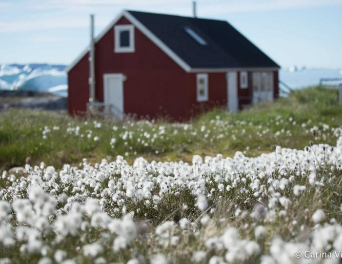 hike-cultural-immersion-2-days-ilulissat-disko-bay-Guide to Greenland6