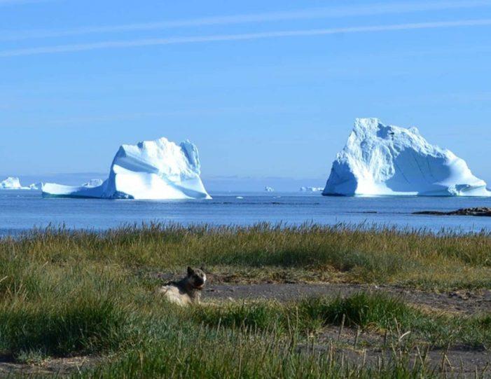 history-walk-qeqertarsuaq-disko-bay-Guide to Greenland3