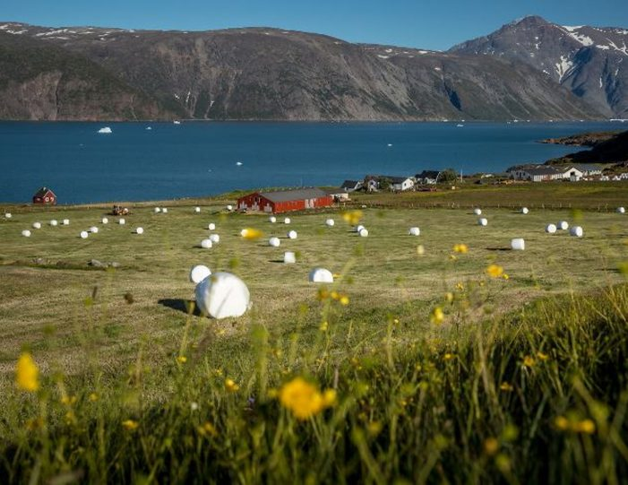 hot-spring-uunartoq-by-helicopter-qaqortoq-south-greenland - Guide to Greenland5