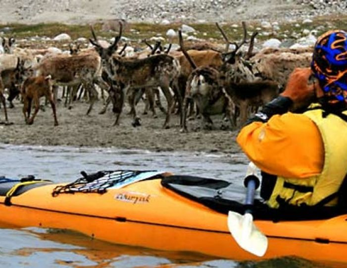 kayak-ice-hike-15-days-south-greenland-Guide to Greenland3