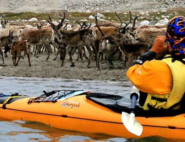 kayak-ice-hike-8-days-south-greenland-Guide to Greenland3