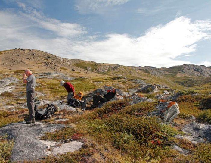 musk-ox-hike-kangerlussuaq-west-greenland-1 - Guide to Greenland (17)