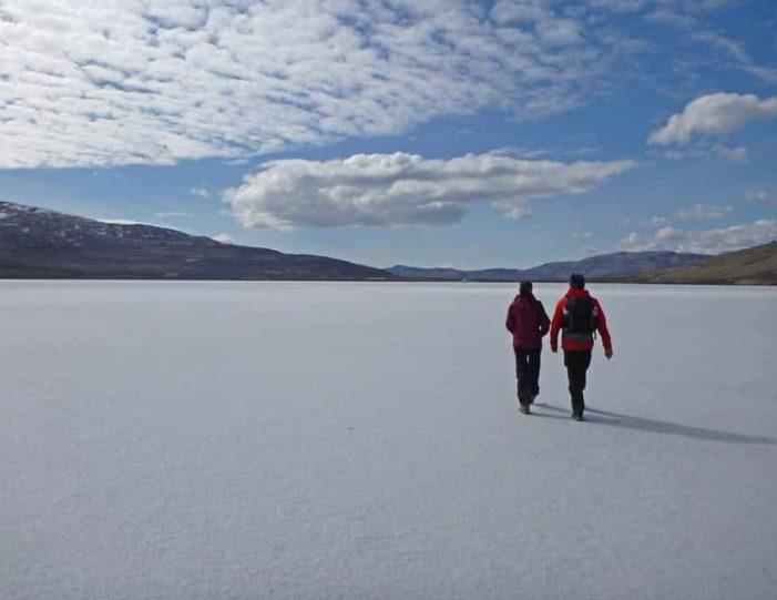 musk-ox-hike-kangerlussuaq-west-greenland-1 - Guide to Greenland (7)