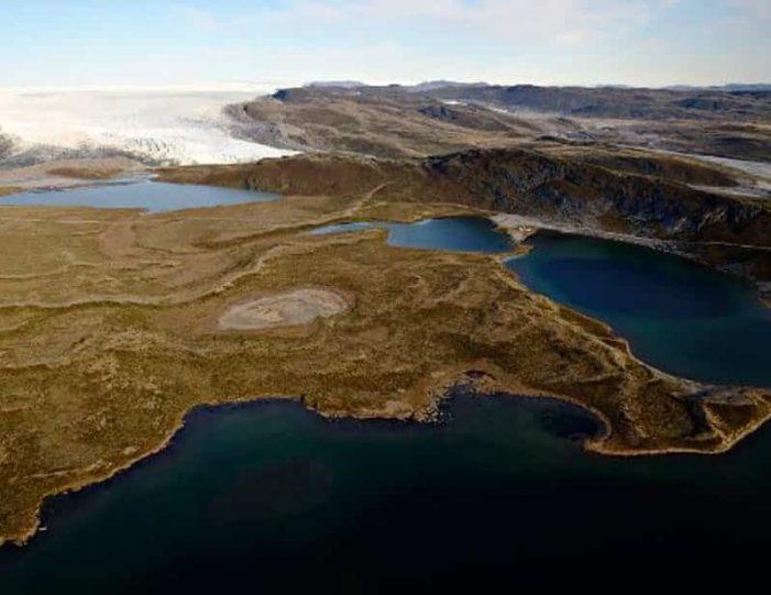 musk-ox-reindeer-ice-cap-tour-kangerlussuaq-6 - Guide to Greenland (3)