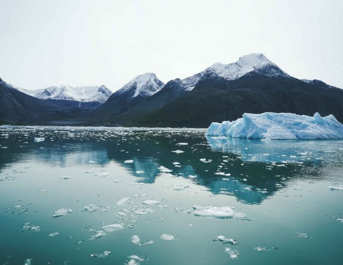 narsarsuaq-easy-package-1-day-south-greenland-Guide to Greenland9