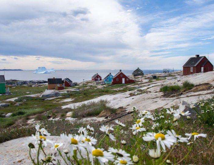 oqaatsut-kayaking-day-ilulissat-disko-bay-7 - Guide to Greenland (3)