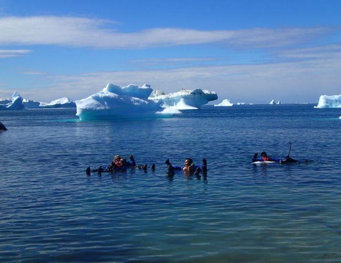 oqaatsut-kayaking-day-ilulissat-disko-bay-7 - Guide to Greenland (6)