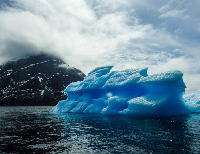 pay-by-the-hour-power-boat-i-nuuk - Guide to Greenland7