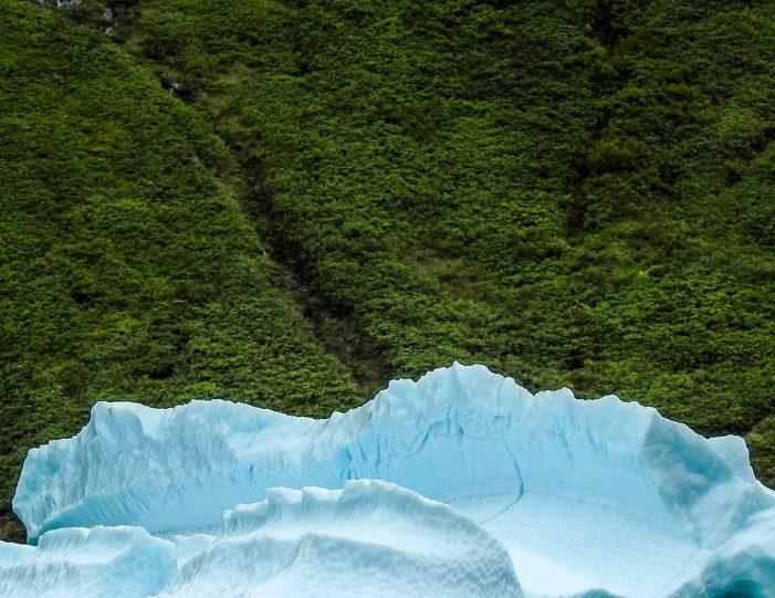 private-fiord-adventure-nuuk - Guide to Greenland1
