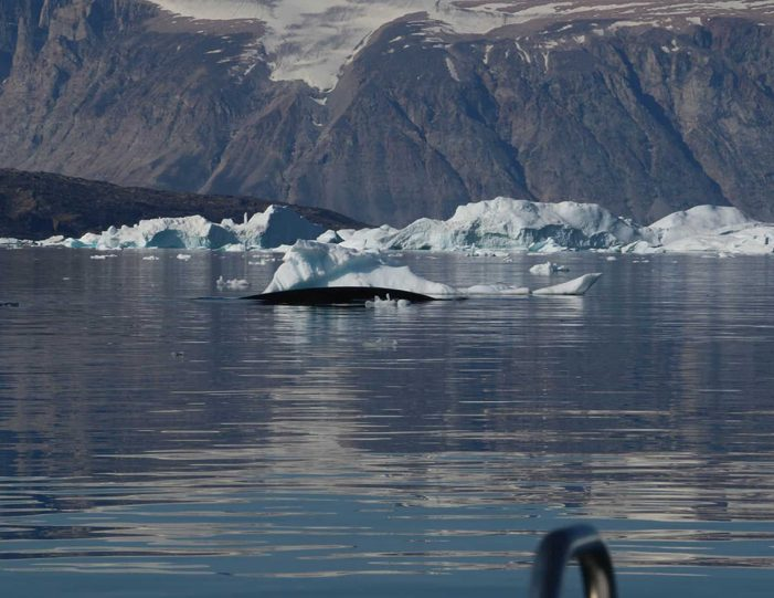 private-glacier-and-settlement-tour-uummannaq-north-greenland-Guide to Greenland5