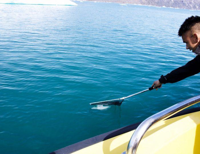 private-glacier-cruise-narsap-sermia-glacier-nuuk-Guide to Greenland13