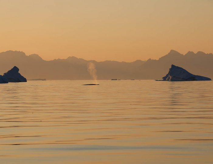private-midnight-sun-tour-uummannaq-north-greenland-Guide to Greenland.jpg3