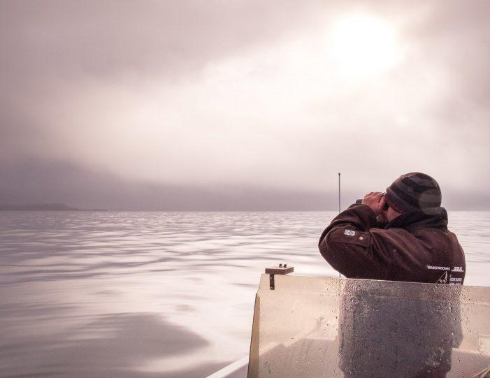 private-sea-safari-in-open-boat-sisimiut - Guide to Greenland6