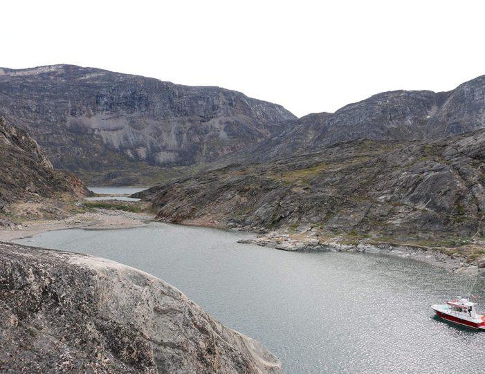 private-whale-musk-ox-safari-uummannaq-north-greenland-Guide to Greenland.jpg7