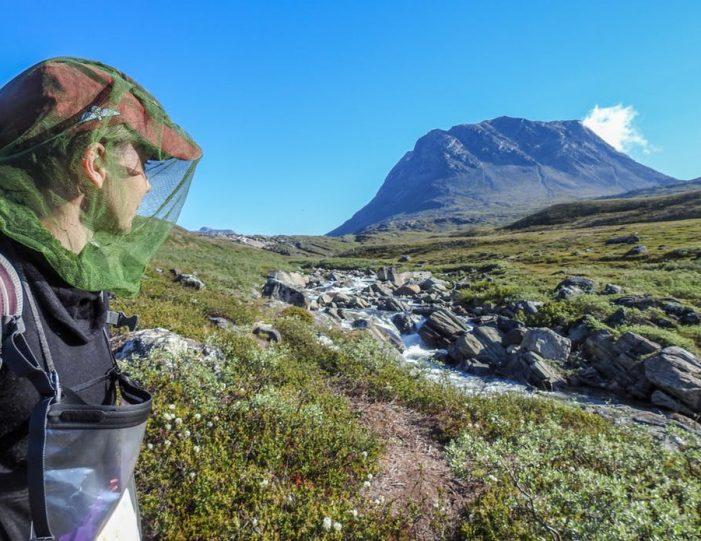 qooqqut-nuan-nuuk- Guide to Greenland2