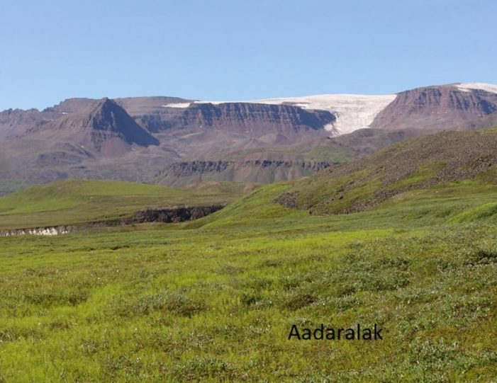 qorlortorsuaq-hike-qeqertarsuaq-disko-bay - Guide to Greenland4